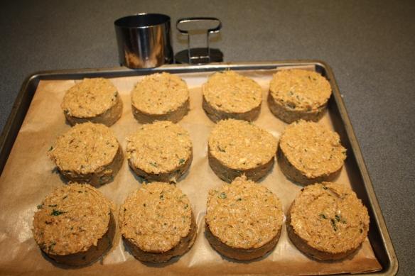 Cuisiner les restes palets Tandoori